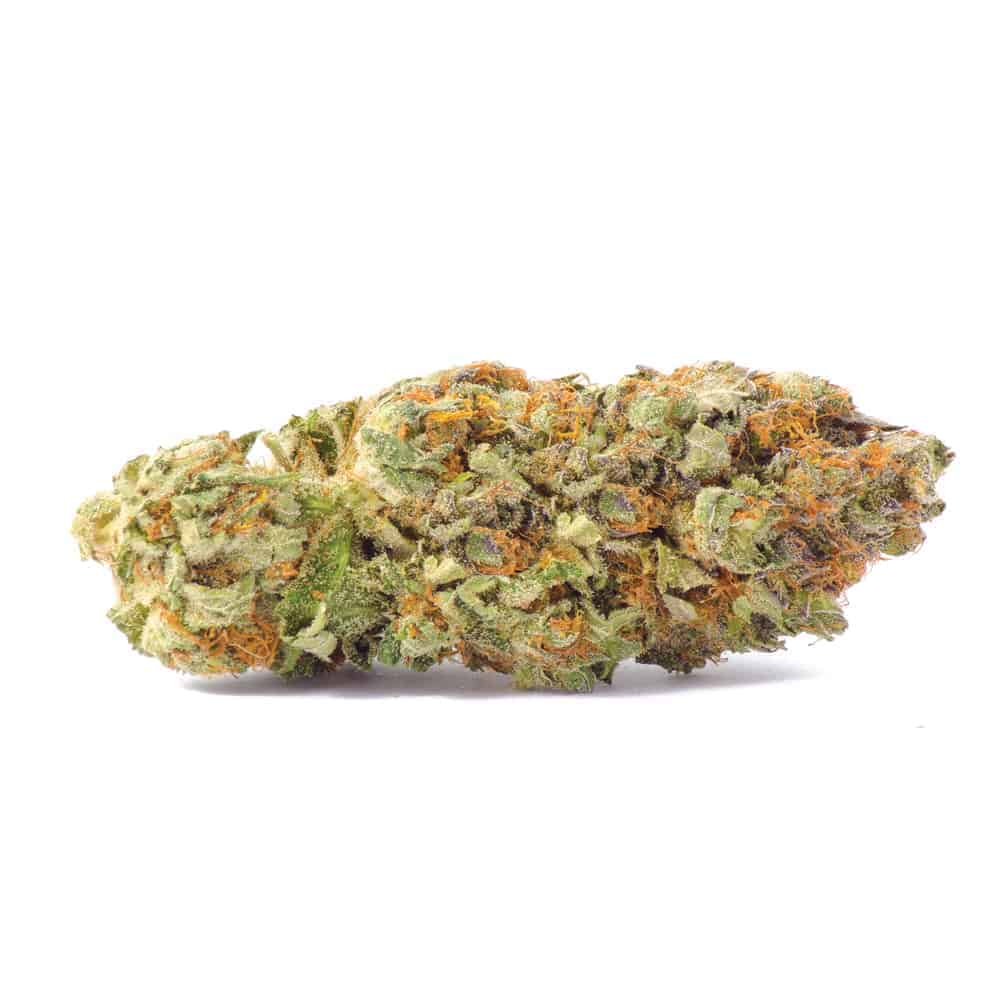 """""""Grandaddy purple weed strain with a white background"""""""