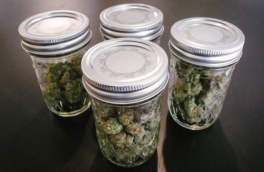 weed-storage