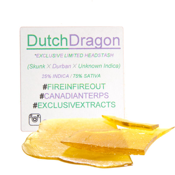 exclusive-extracts-dutch-dragon-shatter