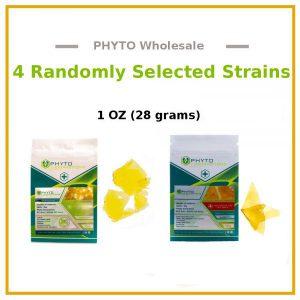 phyto-wholesale-600x600-v2