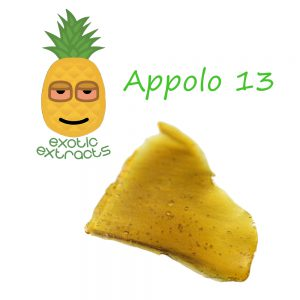 exotic-apollo-13