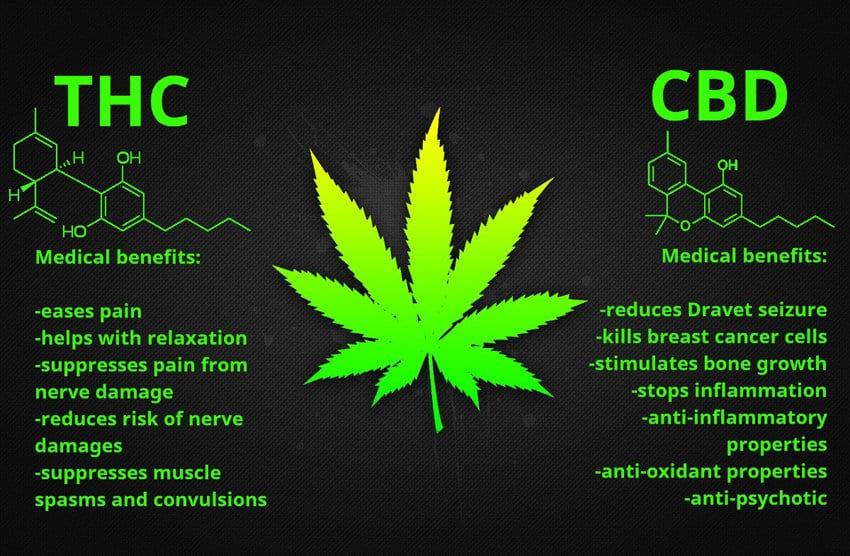 Benefits THC CBD