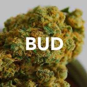buttonbud