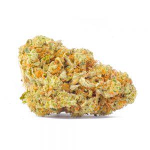 Canada Bud