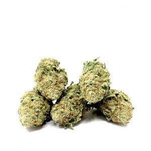 Weed sativa Canada