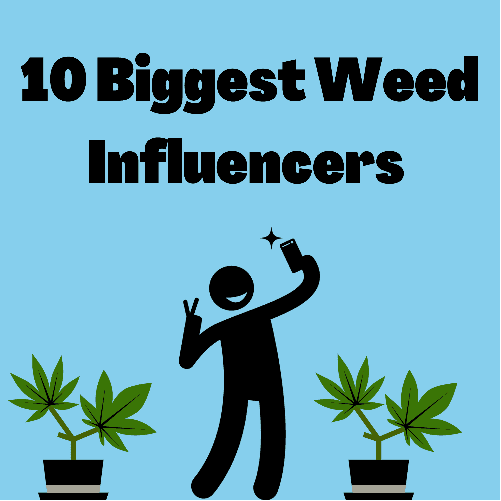 weed influencers