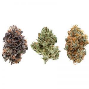 different strains of weed