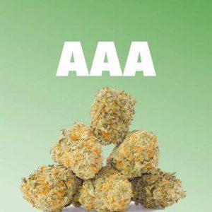 AAA Buds
