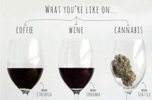 Coffee Wine Cannabis